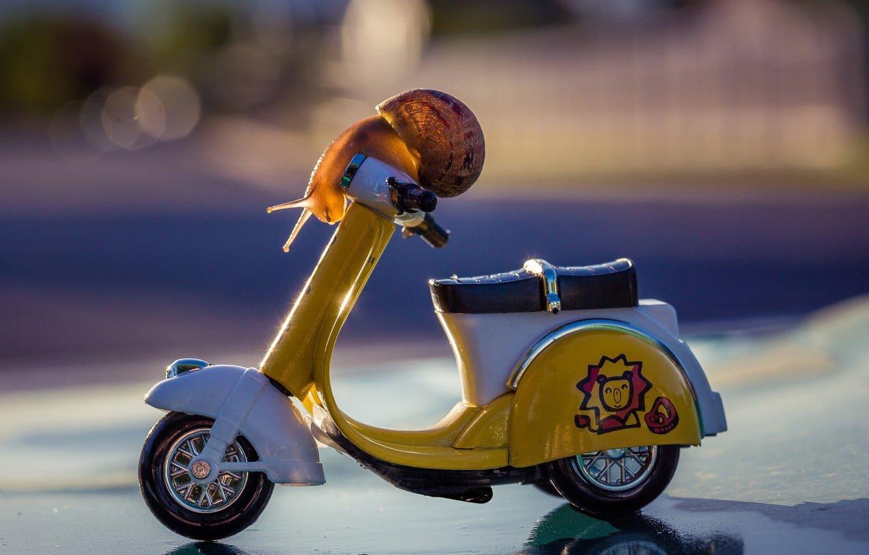 conducteur novice de moto assurance deux roues
